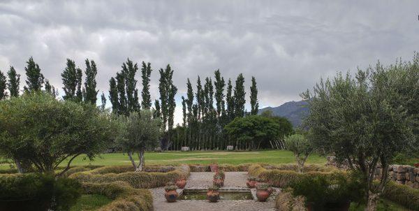 Photo_Tour_South_America_Argentina_Salta_Vineyard_Cafayate3