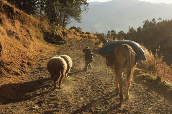 Photo_Tour_South_America_Argentina_Salta_farm_comunity