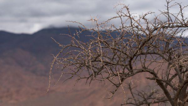 Photo_Tour_South_America_Argentina_Salta_Cafayate_Quebrada_conchas_04